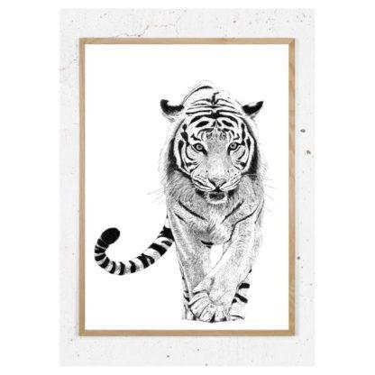 Plakat med tiger