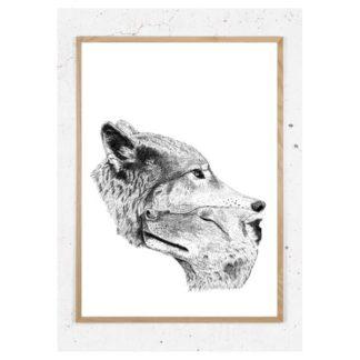 Plakat med ulve