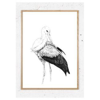 Plakat med stork