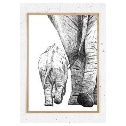 Plakat med elefanter