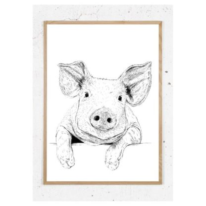 Plakat med gris