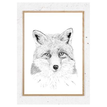 Plakat med ræv