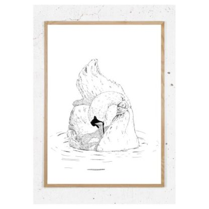 Plakat med svane
