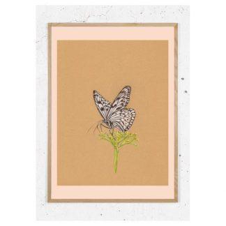 Plakat med hvid sommerfugl