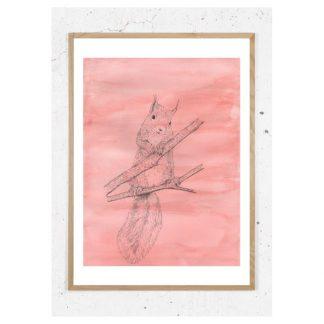 Plakat med egern i træ